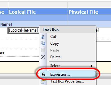 Ssrs Format Expression