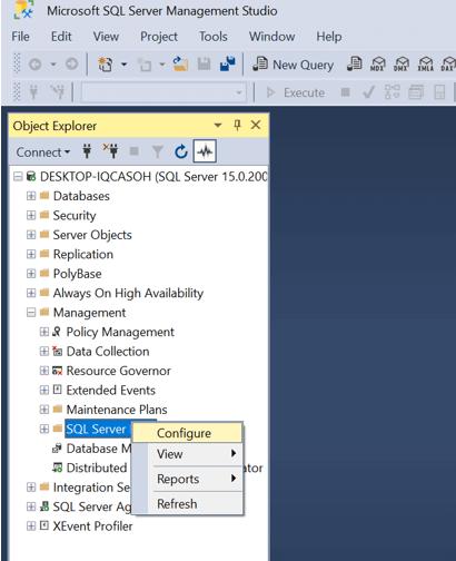 word image 56 SQL Server Error Log