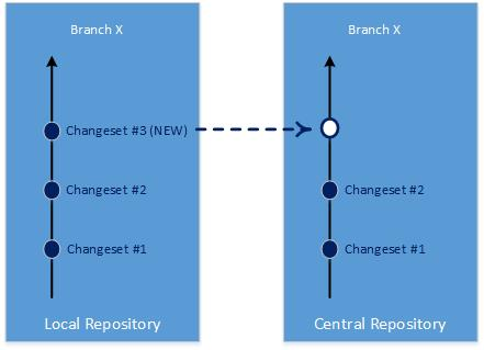 Changesets are copied instead of the whole repository