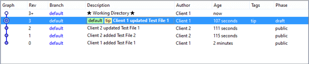 Using the Rebase command to resolve file differences