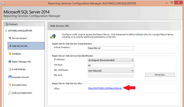 How to write custom code in ssrs 2008 r2