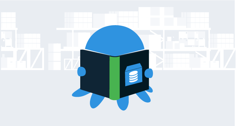 Octopus reading an automated database deployment process case study
